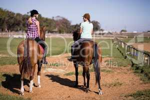 Rear view of female friends sitting on horse