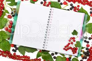 book on background of currant berries, blackberries and raspberr