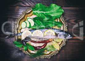Whole raw fish mackerel on an iron plate
