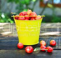 Ripe red cherry in a yellow iron bucket