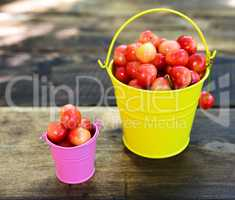 Ripe red cherry in iron buckets