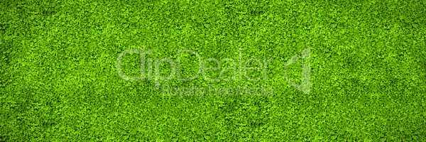 Astro turf surface