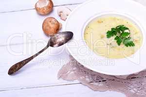 Mushroom mushroom soup in a white round plate