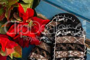Close up of poinsettia by socks on table