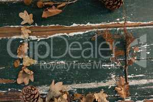 Overhead view of dried leaves and pine cone