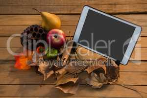 Plant pod with fruits by tablet computer