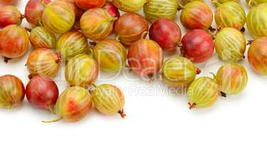 Big ripe gooseberries isolated on a white
