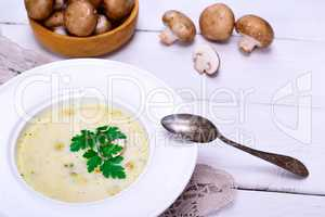 Cream mushroom soup of fresh champignons
