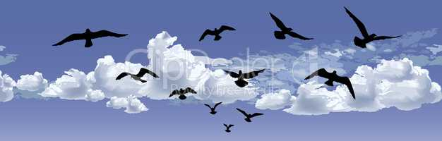 Flock of bird flying Blue sky background. Animal wildlife