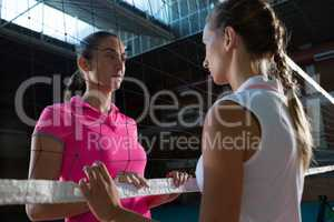 Female volleyball players looking through net