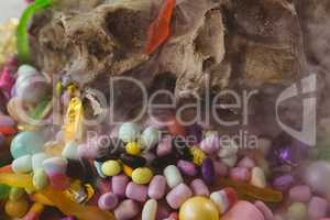 candies by animal skull