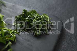 Herb in a chopping board