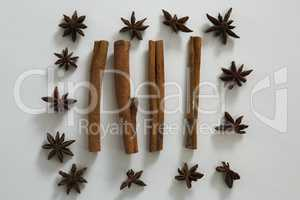 Star anise and cinnamon sticks on white background