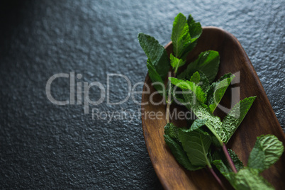 Basil herb in wooden bowl