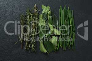 Rosemary, curry leaf and garlic chives on black background
