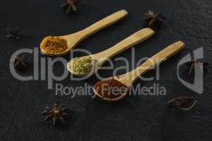 Star anise with various spices powder in wooden spoon