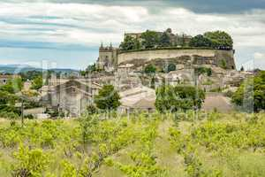 Wine growing in Grignan city in southern France