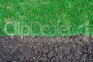 Edge of grass turf ending at fertile dirt.