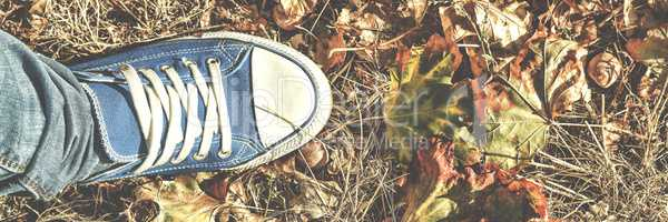 Autumn background. Legs in blue gym shoes standing on colorful fallen leaves. Concept: making important decisions, meditation