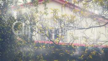 Misty Attic House