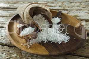 Sea slat on wooden plate