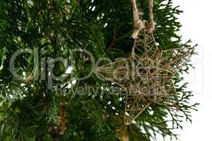 Star shape christmas decoration hanging on christmas tree