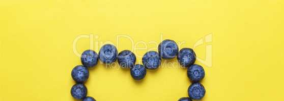 Style minimalism. Blueberries