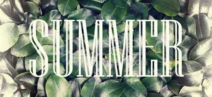 The concept: summer nature, summer vacation, travel. The inscription summertime in a white frame against a background of fresh and juicy green leaves.