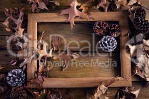 Frame and dry leaves on wooden plank