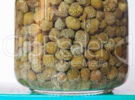 caper (Capparis spinosa) fruit food