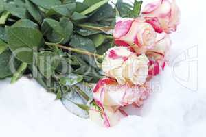 A bouquet of beautiful roses in the snow. Reference picture.