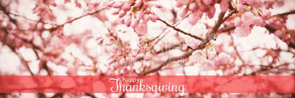Composite image of digital generated image of thanksgiving greeting