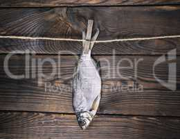 dried salted fish ram is hanging on a rope