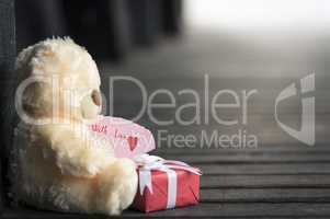 Teddy bear toy and gift box