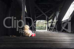 Teddy bear with gift and message