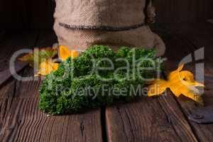 Kale Brassica oleracea