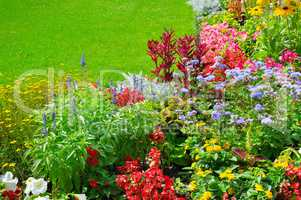 summer flowerbed and green lawn
