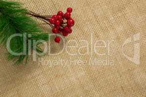 High angle of cheery with pine twig