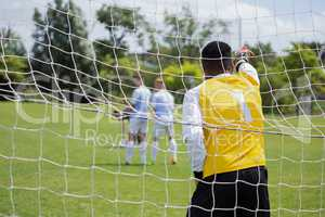Goalkeeper standing at goal post