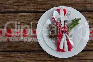 Cutlery with nakin and fern tied up with ribbon in a plate