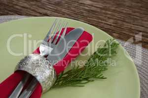 Cutlery with napkin and fern in a plate