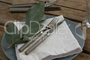 Plate with cutlery set, napkin and leaf