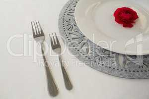 Plate and cutlery set elegantly on a table