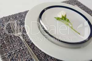 Elegance table setting on white background