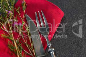 Cutlery and flora on red napkin
