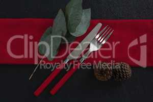 Fork and butter knife with leaf, pine cone and napkin