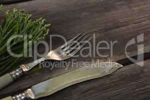Cutlery and flora on wooden plank