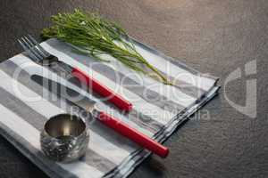Napkin ring, flora and cutlery on folded napkin
