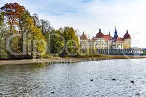 Baroque castle Moritzburg in Saxony