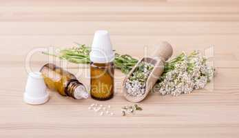 Homeopathic remedy of yarrow